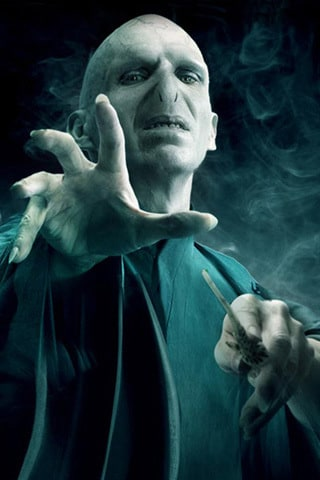 Lord Voldemort / Tom Riddle